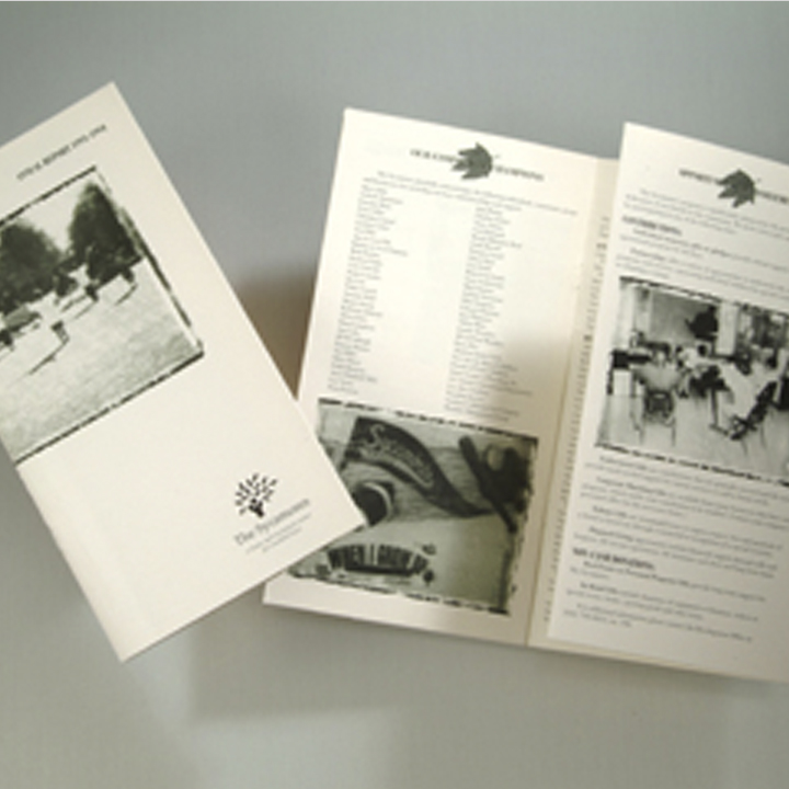 graphic-design-brochure-sycamores